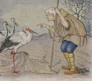 From ''The Æsop for Children'', by Æsop Project Gutenberg etext 19994 http://www.gutenberg.org/etext/19994 ==Used on== *w:en:The Farmer and the Stork ==License== {{PD-Gutenberg}}