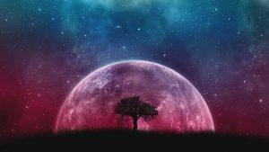 Universe Planet Space Cosmos Galaxy Tree