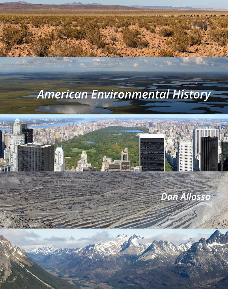 Cover image for American Environmental History