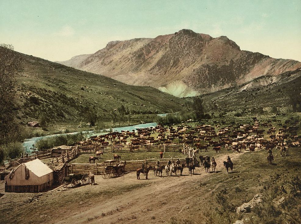 """Colorado. 'Round up' on the Cimarron,"" about 1898."