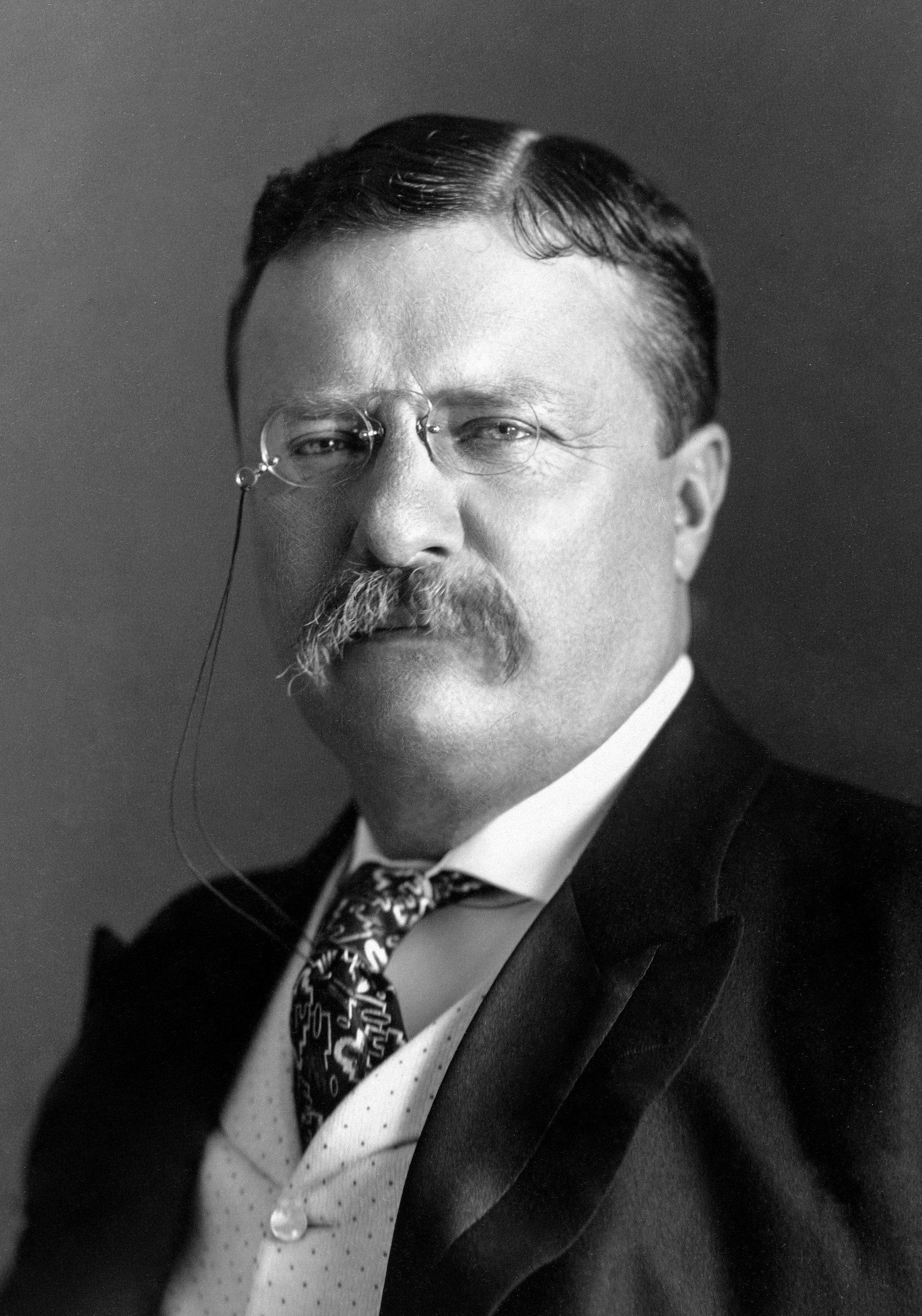 Theodore Roosevelt in 1904