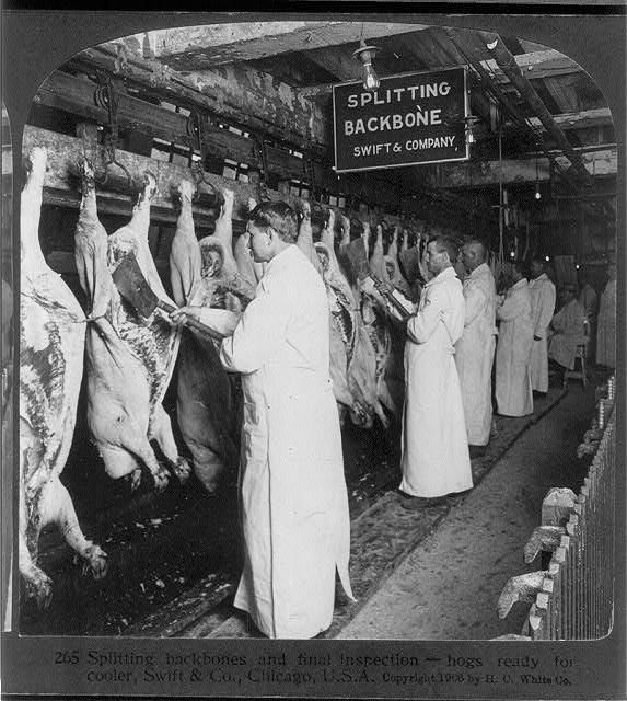 Meat inspectors, 1906.