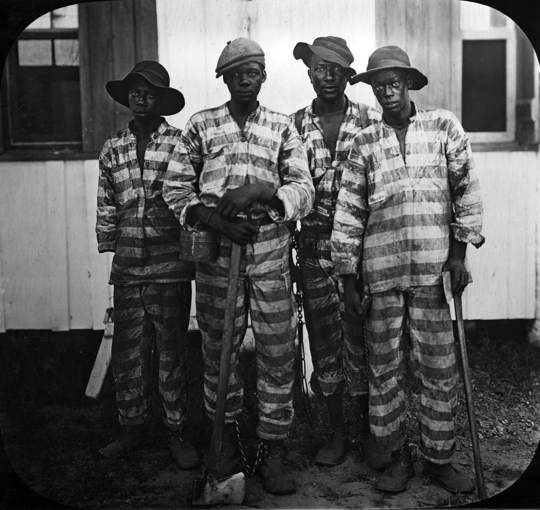 Convicts leased to harvest timber